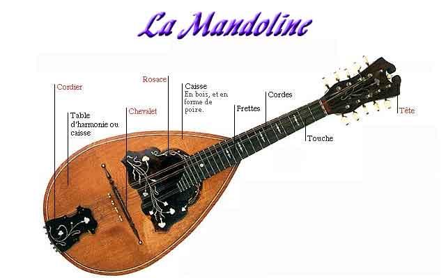 Une gamme de mandoline
